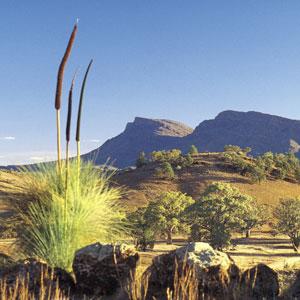 Cruisin Ocean City >> The 21 Best Tourist Destinations in South Australia
